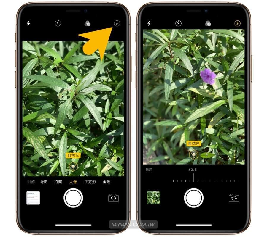 iPhone人像景深控制器怎麼使用?教你拍攝啟用操作與攝影技巧