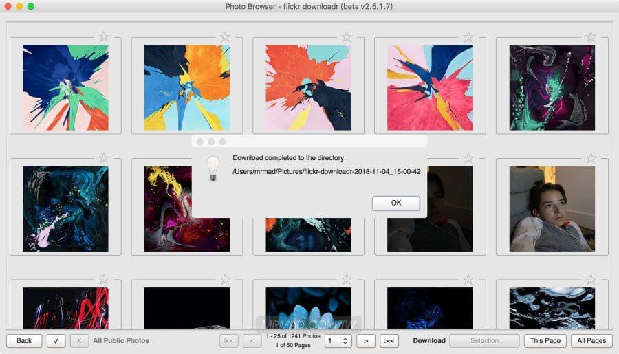 flickr downloadr 批次匯出Flickr照片備份工具,快速將原始圖片備份到電腦