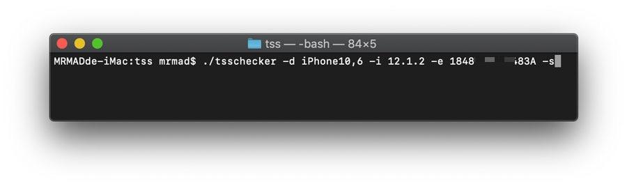 tsschecker教學: 替 Face ID 設備保存備份有效 SHSH2 (Blob) 技巧
