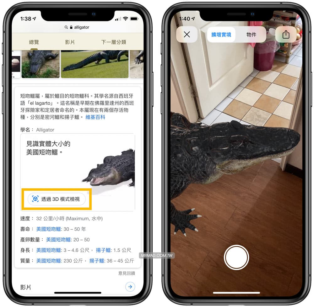 Google AR隱藏彩蛋教學:用 iPhone 和 Android 召喚野生動物