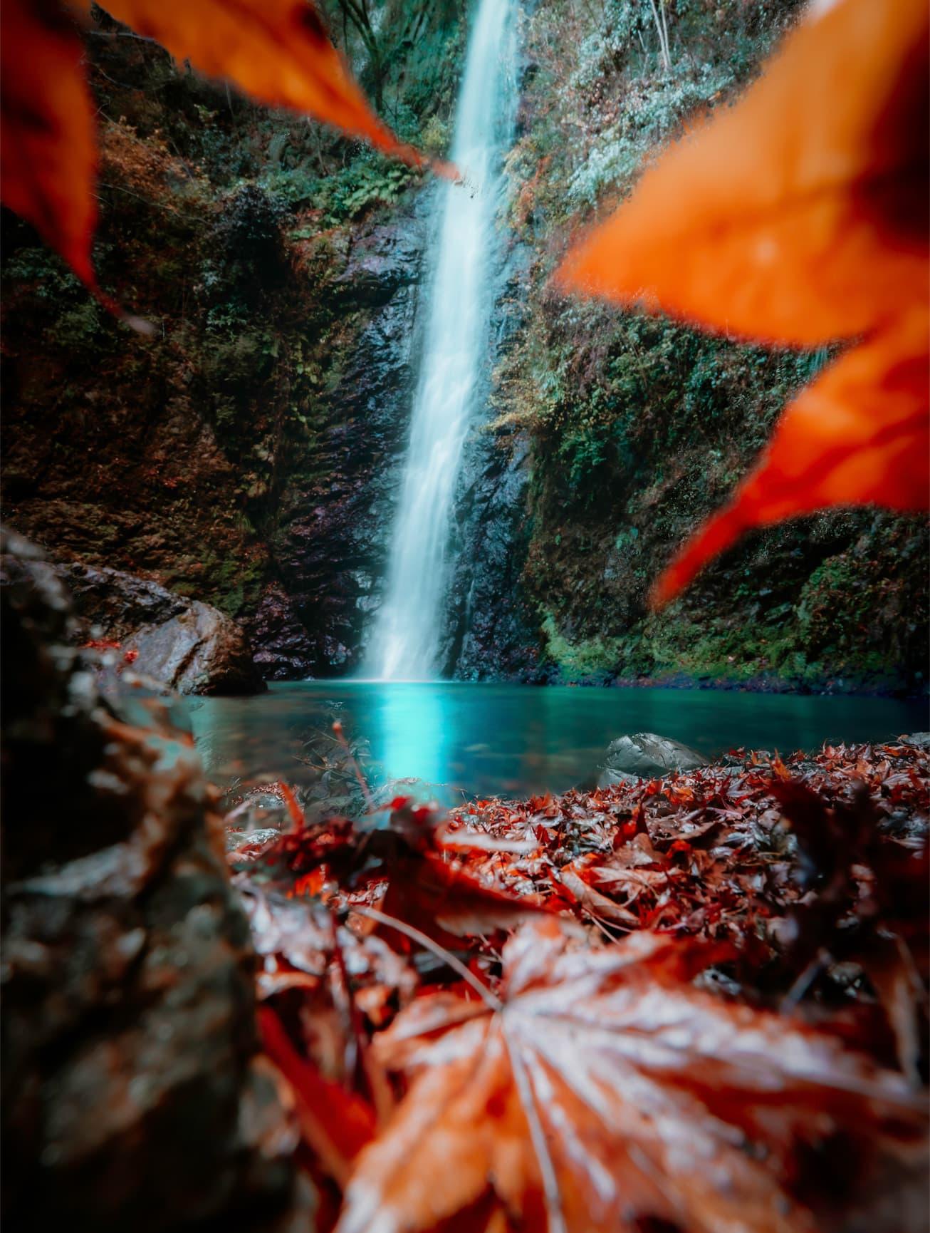 iPhone 12 Pro 拍攝,拍攝者:Ikuchika Aoyama,日本