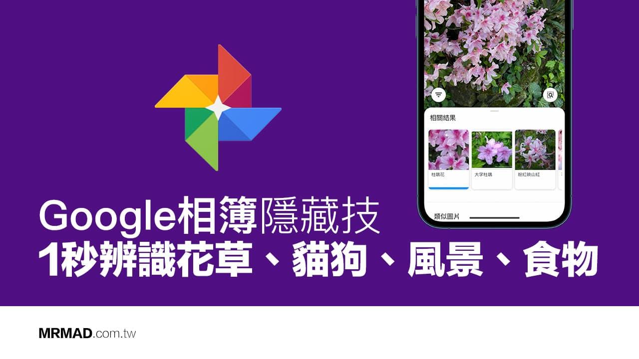 隐藏的Google Photos技术:1秒内识别花朵,植物,狗和猫,风景和食物:Crazy先生