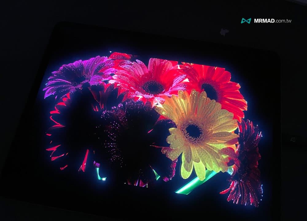 12.9吋 iPad Pro 的 mini-LED 螢幕表現6